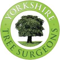 Yorkshire Tree Surgeons Logo
